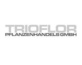 Pflanzenhandels GmbH