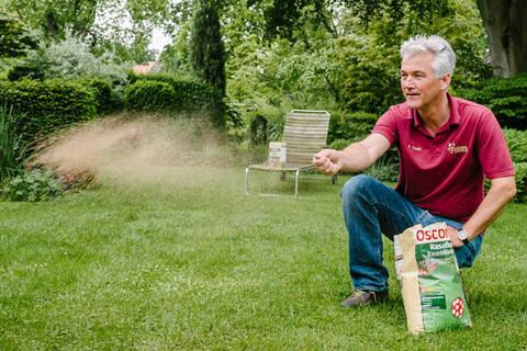 Die besten Tipps: Für den perfekten Rasen