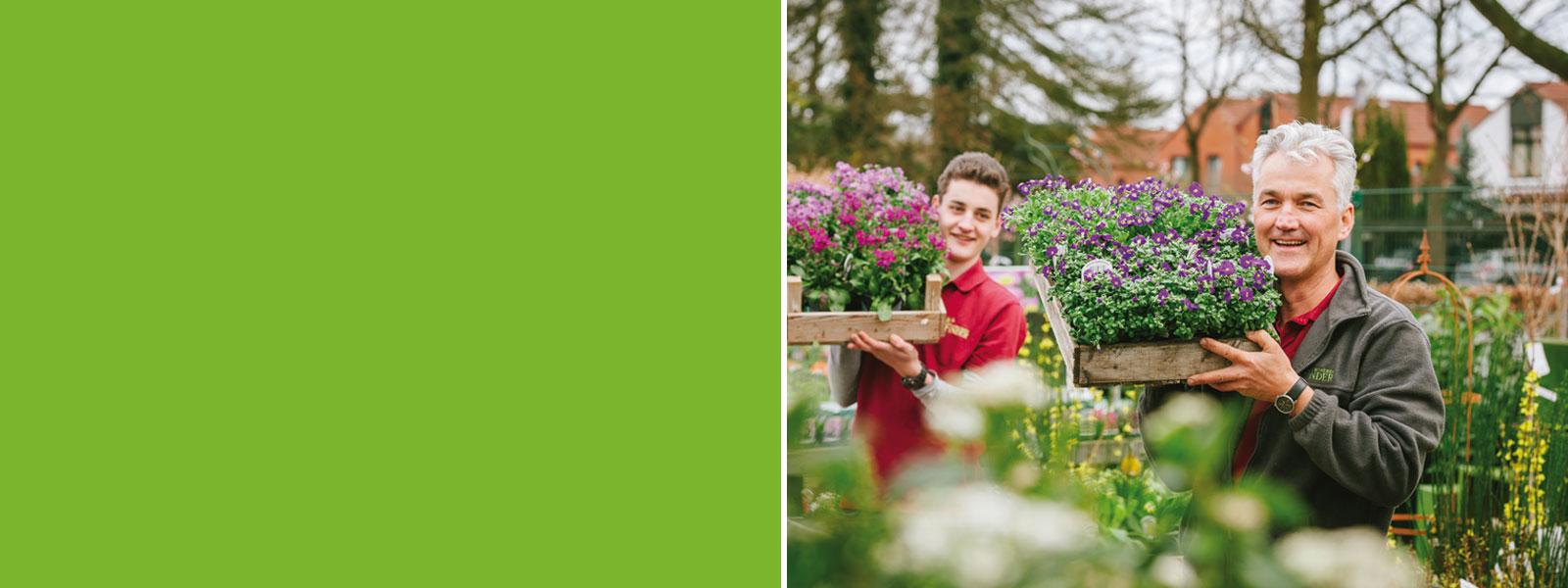 Gärtnerei Finder hat Pflanzen aus guten Händen