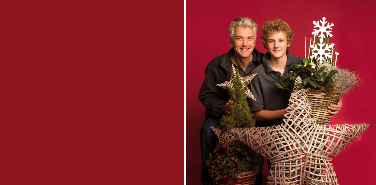 Weihnachtsbaum pflanzen