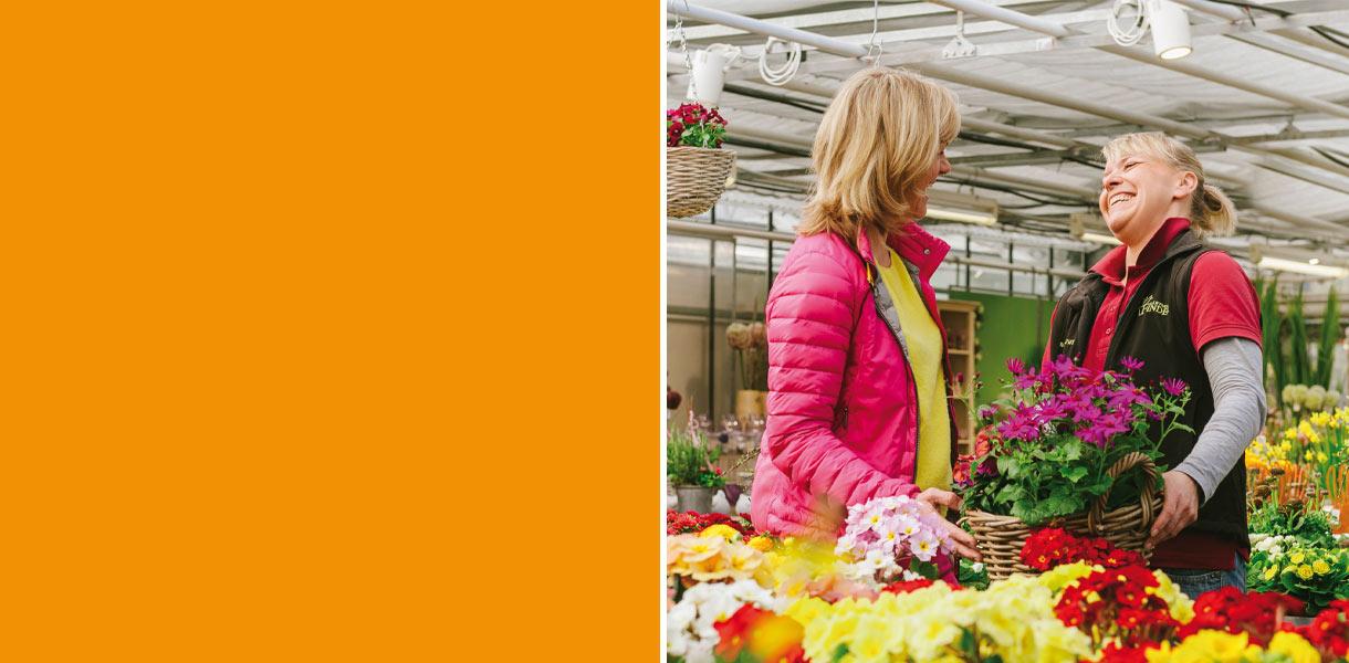 Gärtnerei Finder Hamburg Regionale Frühlingspflanzen